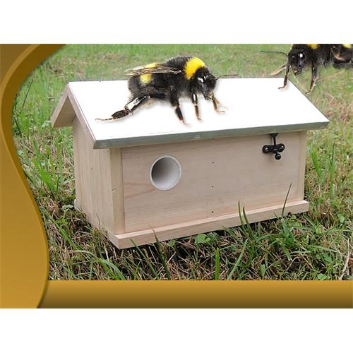 Casa per api calabroni bombi nido albergo xxl in legno ebay - Nido api finestra ...