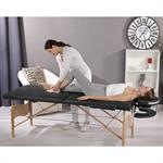 3 Zones Portable Massage Table Beauty Couch Bed  Black incl. Bag Pic:1