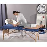 Aluminium 3 Zones Mobile Portable Folding Massage Table Couch Sofa Blue + Bag Pic:1