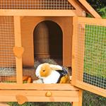 XL - 2 Stories - Small Animal Cage Rabbit Hutch Pic:3