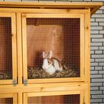 6 Box Bunny Rabbit/Guinea Pig Hutch House Cage Pen Wood Pic:1