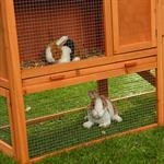 Bunny Rabbit/Guinea Pig 2-Tier Hutch Pet Animal Outdoor Cage Run House Pic:3
