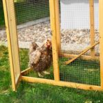 XXL Large Wooden Hen House Chicken Coop Poultry Ark Home Nest Run Coup Pic:3