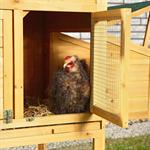 XXL Large Wooden Hen House Chicken Coop Poultry Ark Home Nest Run Coup Pic:4