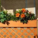Holzsichtschutz mit Blumenkasten Pic:1