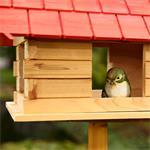 44cm Aviary Volery Bird House Nesting Box Wood Bird-seed Dispenser Feeder Red Pic:1