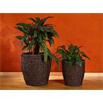 2x Handmade Large Flower Plant Pot Planter Set Floor Vase Round Brown