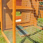 Hühnerstall mit Freigehege aus Holz Pic:2