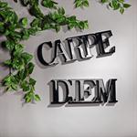 Wandtattoo Wandbild aus Holz / Carpe Diem